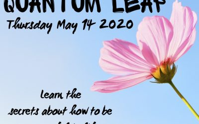 Keller Williams Red Day – Quantum Leap Will Be Taught Free
